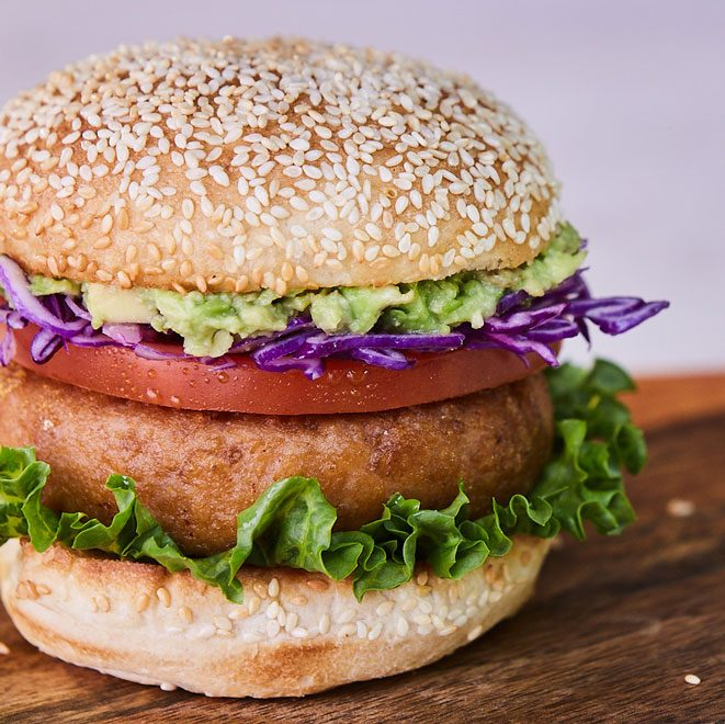 Dr. Praeger's Perfect Turk'y Burger Home Page Category Image
